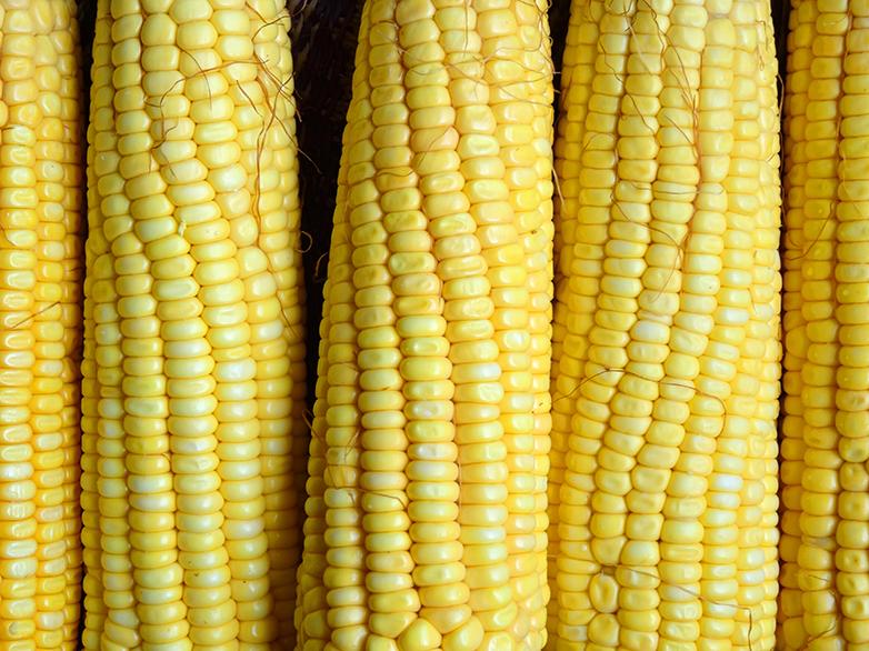 Lelê de milho: na rua e nos tabuleiros